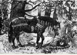 caballo de sigfrido